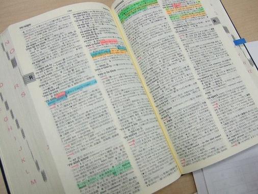 英語 辞書 おすすめ 大学 受験 使い方