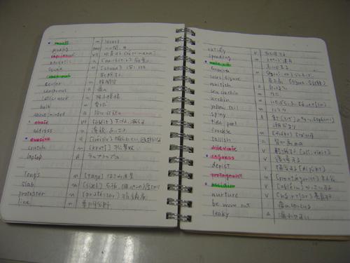 英語 わからない 単語 ノート 色分けにこだわり過ぎない